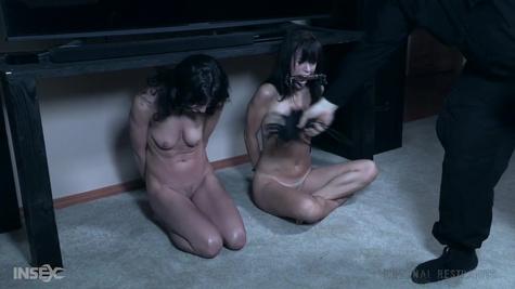 Униженные сексуальные рабыни радуют господина своей покорностью