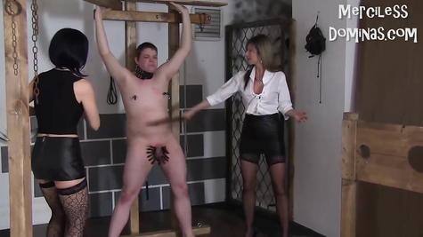 BDSM For Guy - Chicks Dominated